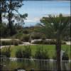 Reflections Resort